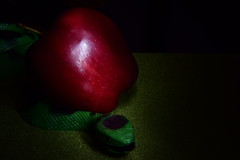 Good snake bad apple (Sowjanya _) Tags: macromondays macromonday good bad adam eve apple snake garden eden sepent serpent green red genesis shiny opposites opposite