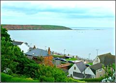 Filey Brigg .. (** Janets Photos **) Tags: uk northyorkshire filey fileybrigg peninsula rocks cliffs