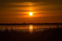 (anto291) Tags: lessaintesmariesdelamer camargue tramonto sunset