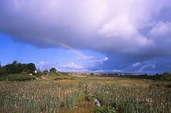Rainbow in the Morning (Purple Field) Tags: ireland summer color film field analog zeiss 35mm walking iso100 rainbow fuji g 28mm rangefinder an contax carl g2 夏 ros provia 散歩 f28 100f 虹 biogon カラー rossaveel 富士 rdpiii rdp3 銀塩 アイルランド フィルム レンジファインダー コンタックス アナログ mhíl canoscan8800f プロビア 愛蘭 ビオゴン カール・ツァイス ロッサヴィール
