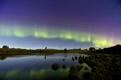 Summer night curtain (John Andersen (JPAndersen images)) Tags: morning red sky green night reflections reeds stars pond purple july calm alberta aurora
