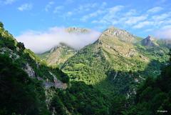 Desfiladero de los Beyos (Asturias) Spain (amajocu) Tags: espaa naturaleza verde spain nikon asturias nubes niebla d5100