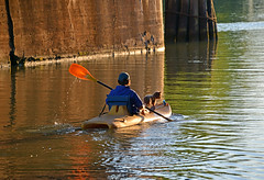 A Boy and His Dog (dr_marvel) Tags: kayak canal erie eriecanal water waterway dog boy paddle pittsford rochester ny newyork