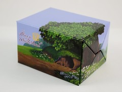 Alice Falling Down the Rabbit Hole Boxed Set - eBay Purchase - Closed - Right Front View (drj1828) Tags: us disneyland dlr dl60 pin disneypintrading purchase 2016 limitedrelease aliceinwonderland 65th anniversary boxed set falling rabbit hole alice