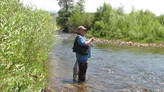 Dad Fighting A Fish On His Fly Rod (fethers1) Tags: flyfishing fishing trout rainbowandbrowntrout fraserriver granby