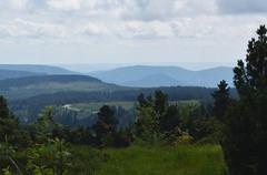 Blue hills - Blaue Hgel (Lala89_Photos) Tags: hill hills hgel berge schwarzwald blackforest black forest sight view aussicht wald landscape landschaft