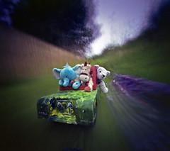 Soft Toy Adventures (wheehamx) Tags: pinhole soft toy adventure hoss bige