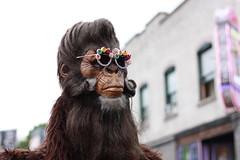 Bigfoot Forums