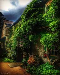 Hill Top (deancolclough74) Tags: cottage cottagegarden ivy wisteria 150years lakedistrict hdr nationaltrust peterrabbit beatrixpotter cumbria hilltop