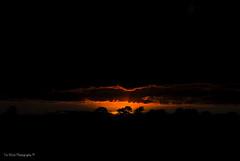 DSC_0216-HDR (timmie_winch) Tags: nikon nikond3000 d3000 august august2016 2016 sun sunset sunsetsuffolk sunsetoversuffolkcountryside sunsetovercornfields sunsetovercornfield silhouette 18105mm 18105vr nikon18105mmvrlens shadows golden goldenhour goldenlight elliedunn ellie eleanordunn ells eleanor ellsdunn dunn landscape landscapephotography landscapephotographer naturephotographer naturephotography nature timwinchphotography tim timwinch winch debenham ip14 suffolk