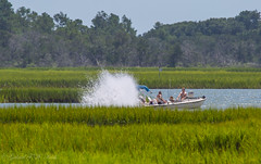 Tourists Destroying Marsh (Gabriel FW Koch (fb.me/FWKochPhotography on FB)) Tags: boat boating tourists spray churning marsh water grass green people lowtide canon lseries telephoto zoom eos dof bokeh