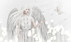.I stand for Peace. (JasmineStardust) Tags: istandforpeace peace dove magical white light magic girl sad candles second life sl angel dress feather