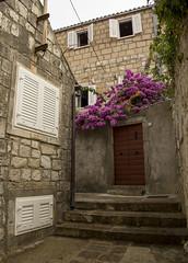 Narrow and winding street with Bougainvillea flowers - Cavtat, Croatia (Cini S) Tags: cavtat croatia dalmacijadalmatia hrvatska oldtown oldcity bougainvillea