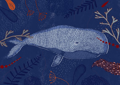 Wale (olga yurlova) Tags: whale olga yurlova illustration wal grafik graphik ocean water