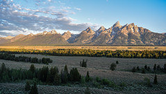 Good Morning, Teton Range (T.M.Peto) Tags: grandtetonnationalpark grandteton tetons wyoming mountains mountainpeaks trees lightandshadow morning landscape scenery scenic mountainside glacier summer outdoors getoutdoors getoutside travel nationalpark nps mygtnp jacksonhole valley riverplain geology moraine sagebrush landscpaephotography snowfields