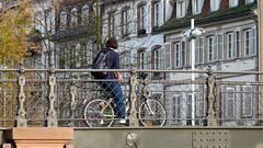 (alain_halter) Tags: france alsace pont basrhin byciclette