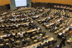 Committee for the Recurrent Discussion on Social Protection (ILO PHOTOS NEWS) Tags: geneva group meeting palais committee ilc delegate delegates ilo employers ilc2015 104thsessionoftheinternationallabourconference committeedebatediscussiontalkssocial protectionlabour protectionlabouremployers