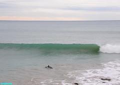 ACrowdOfOne (mcshots) Tags: ocean california travel sea usa beach nature water point coast surf waves view stock socal breakers mcshots swells springtime combers losangelescounty