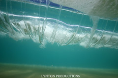 IMG_1624 copy (Aaron Lynton) Tags: vortex canon hawaii waves barrels barrel wave maui 7d spl turbine makena shorebreak lyntonproductions