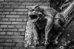 Gargoyle from chatedral in Osijek #4 (v.Haramustek) Tags: gargoyle osijek cathedral curch statue sculpture bw evil guarding monster stone art zoom arhitecture kreative scaring blackandwhite monochrome texture surreal croatia slavonija photoborder ngc