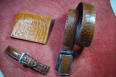IMGP6390 (lelamminh) Tags: crocodile alligator watchstrap watchband wallet menbelt