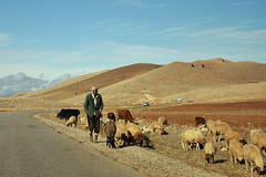 On the way to Fez (roberto_junho) Tags: nikon morocco fez marrocos 2014 d90