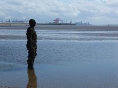 DSCF0724 (SierPinskiA) Tags: sea shells beach liverpool sand ironman pools barnacles ironwork mayday seashore merseyside anthonygormley irishsea 2016 anotherplace crosbybeach blundellsands fujixs1