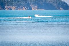 Catseye Beach-2 (Quick Shot Photos) Tags: greatbarrierreef hamiltonisland queensland whitehavenbeach whitsundays australia au