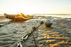 (Digital_trance) Tags: landscape nature sunset     oyster  clam    seafood  windmill star  cloud   venus  jupiter moon    crab    taiwan changhua changhuataiwan      startrails