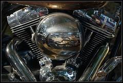 Live To Ride (Ernie Misner) Tags: pacificraceways dragraces motorcycles harleydavidson harley erniemisner nikon nik capturenx2 cnx2 f8andbethere shootflowersormotorcycles