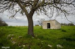 DSC_0448 (robertabinetti) Tags: puglia panorama natura verde casale