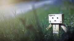 Danbo's Summer (Lemuel Montejo) Tags: danbo toy actionfigure summer outdoor stilllife amazon