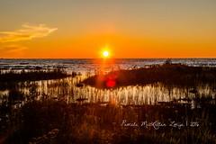 20160828-IMG_7769-WM (Pamela McLellan Zmija) Tags: pamelamclellanzmija saugeenshores portelgin sunset beach lakehuron goblesgrove sunshine