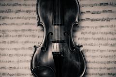 VIolin (Fe_Lima) Tags: violin shallowdof shallow blackandwhite bw blackwhite blackandwhiteviolin composition light nikon d7100 nikond7100 dof simple