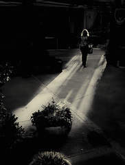 (Stevenchen912) Tags: sunset shadow sunlight composition contrast blackwhite alone streetportrait streetscene solo streetphoto perspectiva depth decisivemoment urbanlife streetphotographer urbanstreet streetcandid streetscen streetfavorites