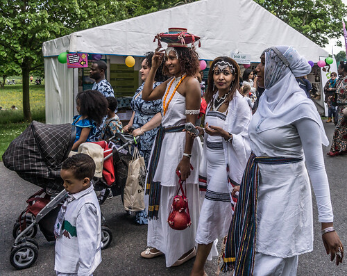 I HAD A WONDERFUL DAY AT AFRICA DAY 2015 [FARMLEIGH HOUSE IN PHOENIX PARK]-104565