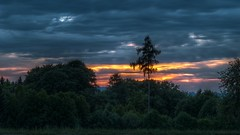 Cloudy (Erich Hochstöger) Tags: trees sunset clouds forest landscape lumix austria evening österreich sonnenuntergang cloudy wolken panasonic landschaft wald bäume niederösterreich hdr abendsonne abendrot abendstimmung amstetten loweraustria mostviertel bewölkt fz150