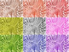 dream of the white peacock - fav colour Lieblingsfarbe: black white schwarz weiss blue blau violet violett pink rosa red rot bunt orange brown braun yellow gelb green grn - Traum des weien Pfau im Farbkreis - zoo Tiergarten Schnbrunn (hedbavny) Tags: schnbrunn vienna wien pink blue red orange white man black color colour male green rot bird texture animal yellow sepia fence silver zoo austria design sketch sterreich pattern diary rad dream feather violet rosa peacock sketchbook note gelb ornament mann grn blau farbe tagebuch muster schwarz tiergarten vogel gitter violett balzen silber veilchen pfau traum feder entwurf weis bearbeitung skizze hietzing sewingpattern textur notiz posieren skizzenbuch lieblingsfarbe farbkreis schnittmuster hedbavny ingridhedbavny