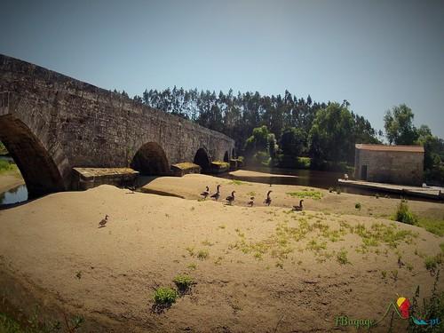 2015-05-22_054_CaminhoPortuguesSantiago