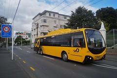 Aro Street (andrewsurgenor) Tags: city bus buses yellow electric busse transport transit nz wellington publictransport streetscenes omnibus trolleybus obus trolleybuses citytransport trackless nzbus gowellington