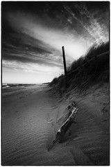 In the middle of nowhere (stejo) Tags: cloud seascape beach nature strand sunrise scenery waves branch balticsea pole hav soluppgång östersjön landskap moln stolpe gotskasandön trädrot ilobsterit wågor