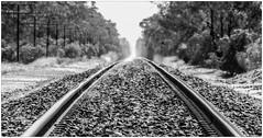 Railroadtracks, Australia (CvK Photography) Tags: railroad autumn holiday color fall canon au australia victoria australi cvk walwal
