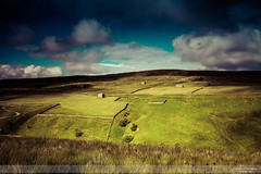 Light on the Fells I (go18lf2004) Tags: yorkshiredales light clouds mood countrysidse sky buildings sheep drystonewalls grasses atmospheric england fields pasture outdoors landscape