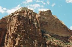 Roadtrip2016-A2e-Zion-Lomo100-01-008 (aaron_anderer) Tags: canon eos a2e 35mm film zion nationalpark
