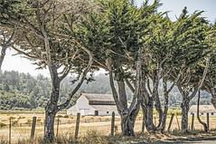 the Hay Barn (luqmac) Tags: clouds barn hwy1 californiacoast coasthighway pointreyesstationcalifornia invernessparkcalifornia nikond7100