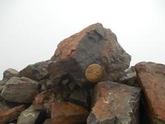 The Wheeler Peak USGS Medallion (jimmywayne) Tags: mountain newmexico carson highpoint nationalforest taos usgs highest wheelerpeak taoscounty