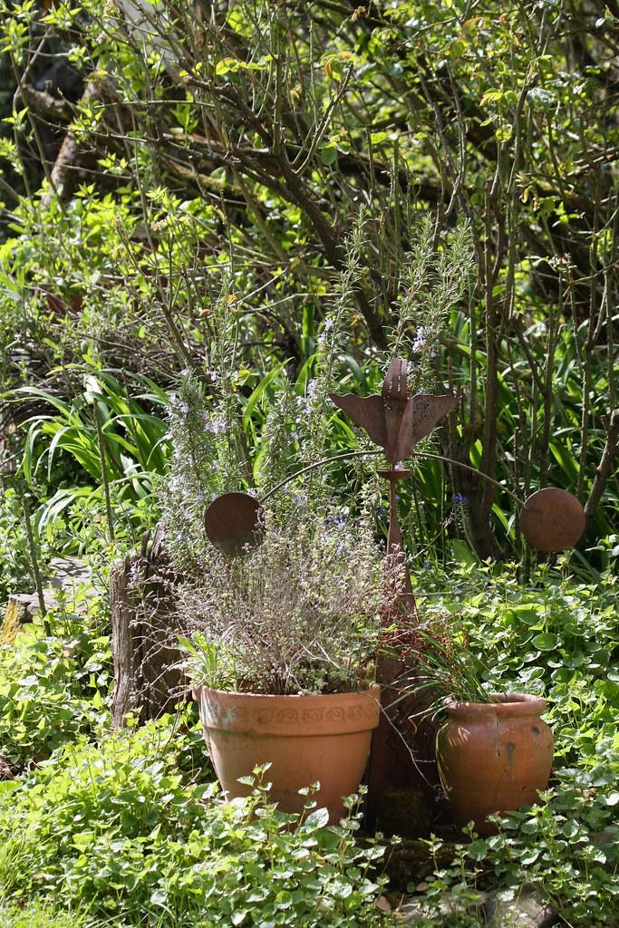 Ckuchem 9942 (christine_kuchem) Tags: Topf Rost Garten Blumentopf Eisen  Lavendel Windspiel Skultur