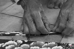 2016  The hand (asun5) Tags: shandraw hand photograph itsmylife flower cloth technology taiwan old man