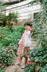 000583850038 (Chunyen Yu) Tags: film nikonfe 50mmf18 fujifilmpro400h