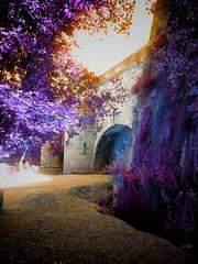 Fantasía (edu_izu) Tags: fantasy fantasía utopía chillout